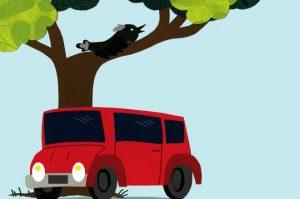 Kukku's-Car