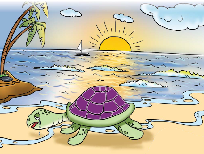 The-Proud-Tortoise