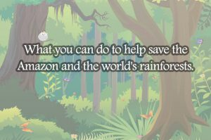 amazon-rainforest1.jpg22