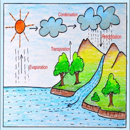 water-cycle1
